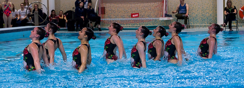 Synchronized Swimming image